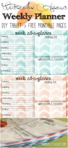 Weekly-planner-pin